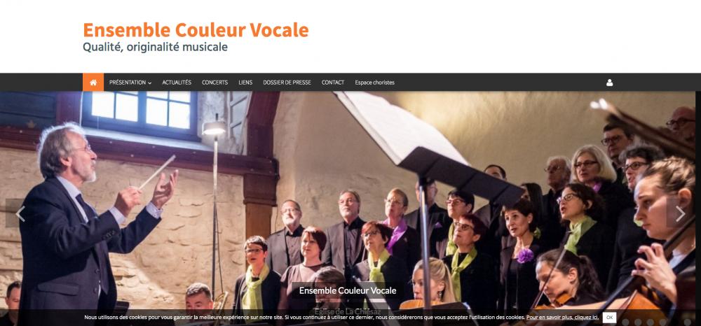 ensemble-couleur-vocale-qualite-originalite-musicale_-www-couleurvocale-ch
