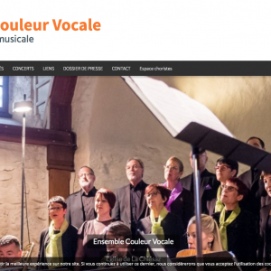 ensemble-couleur-vocale-qualite-originalite-musicale_-www-couleurvocale-ch